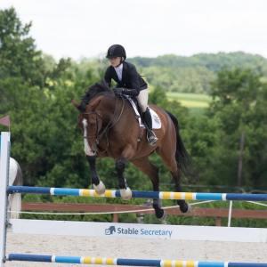 Jaimey Lancaster Jumping Bay Horse