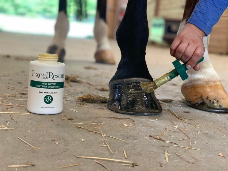 Hoof Conditioner for Horses