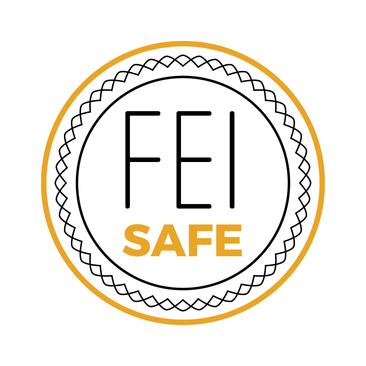 USEF and FEI safe