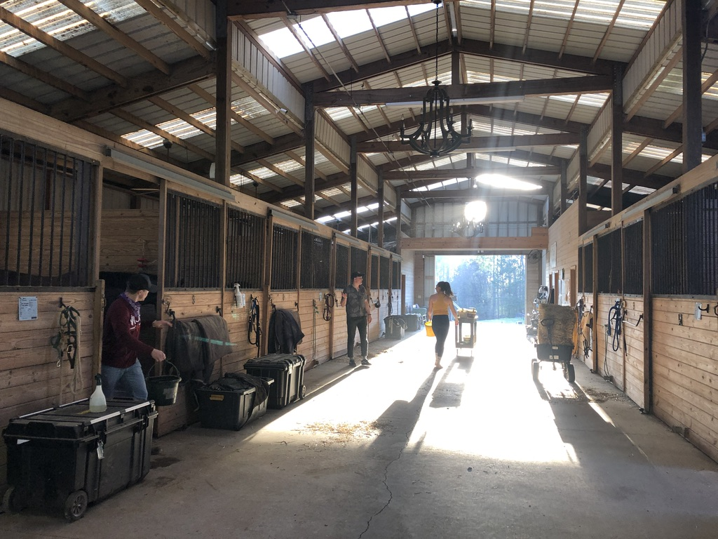 Spycoast Farms Performance Stables sponsored by Excel Supplements