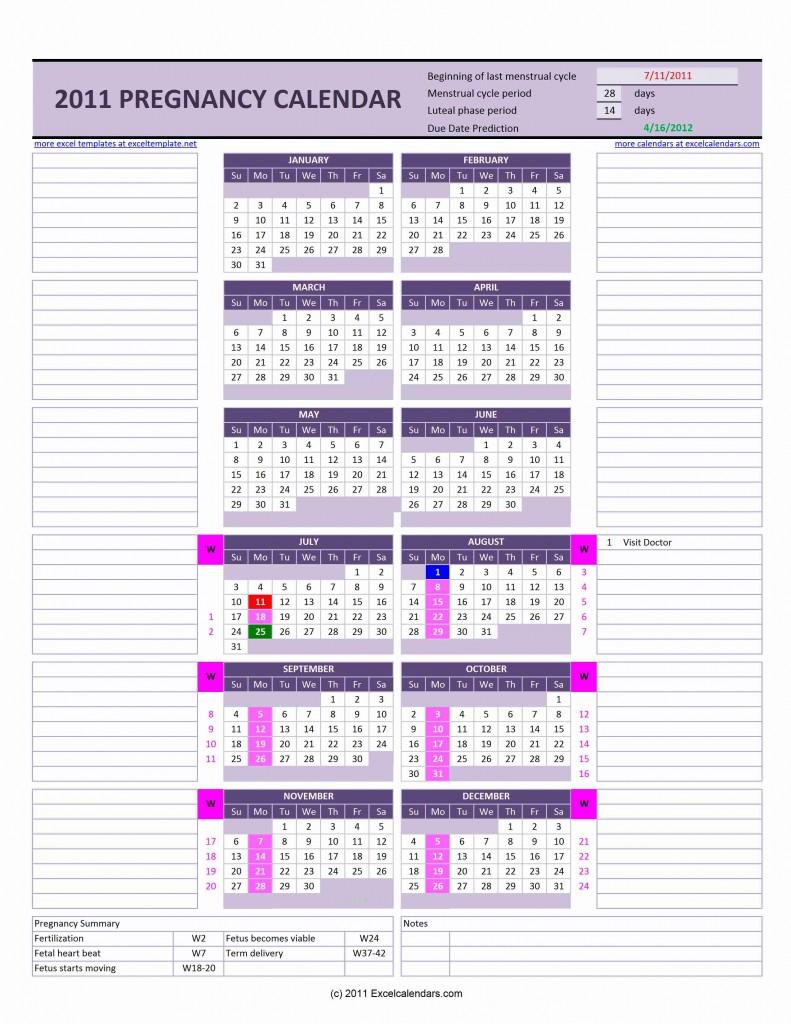 Pregnancy Calendar | Excel Templates