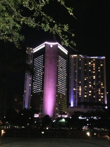 InterContinental Miami Copyright Shelagh Donnelly