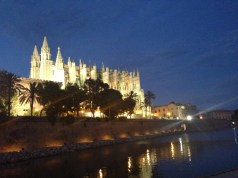 Palma De Mallorca 7113 Copyright Shelagh Donnelly