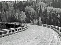 Kiskatinaw Bridge Alaska Hwy 0017 Copyright Shelagh Donnelly
