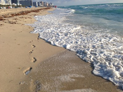 South Beach 5257 Copyright Shelagh Donnelly