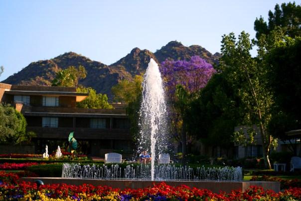 Arizona Bilrmore 4899 Copyright Shelagh Donnelly