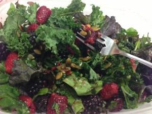 Summer Salad Copyright Shelagh Donnelly