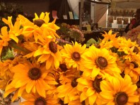 Kits F Market Sunflowers 1195 Copyright Shelagh Donnelly