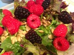 Berry salad Copyright Shelagh Donnelly