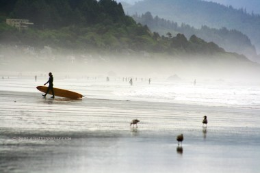Cannon Beach Surfer 2015-6339 Copyright Shelagh Donnelly