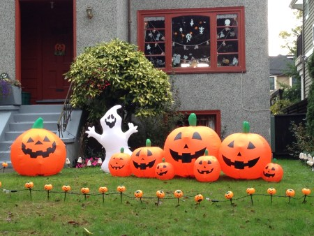 Halloween Lawn Copyright Shelagh Donnelly