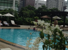 IC Singapore Pool 8732 Copyright Shelagh Donnelly