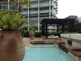 IC Singapore Pool 8741 Copyright Shelagh Donnelly