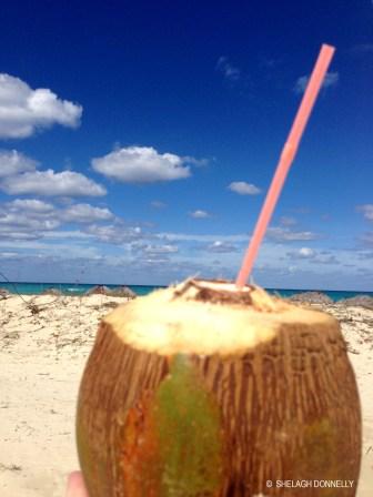 lifes-a-beach-1638-copyright-shelagh-donnelly