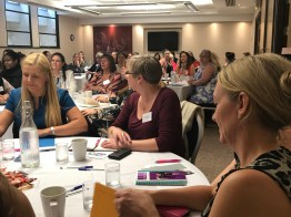 EPAA Development & Training Day 5612 Sep 2017 Manchester Copyright Shelagh Donnelly