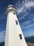 Cape Spear Lighthouse 17-8840 Copyright Shelagh Donnelly