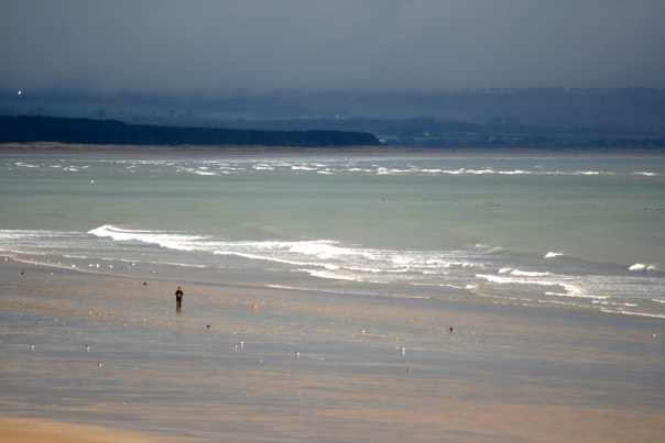 18_9042 Morning_Walk_Firth_Coast_by_Macdonald_Rusacks_Hotel_St_Andrews_Scotland Copyright Shelagh Donnelly