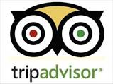 The Contradictions of TripAdvisor Forums