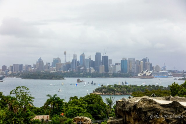 塔龍加動物園遠眺悉尼海港 Sydney Harbour from Taronga Zoo