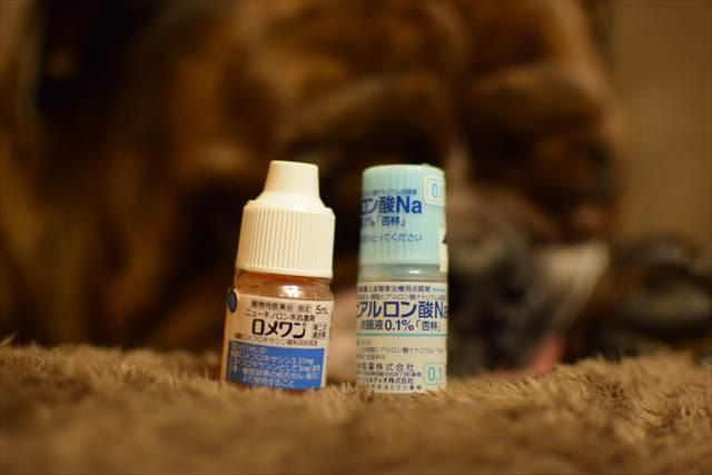 犬用の目薬