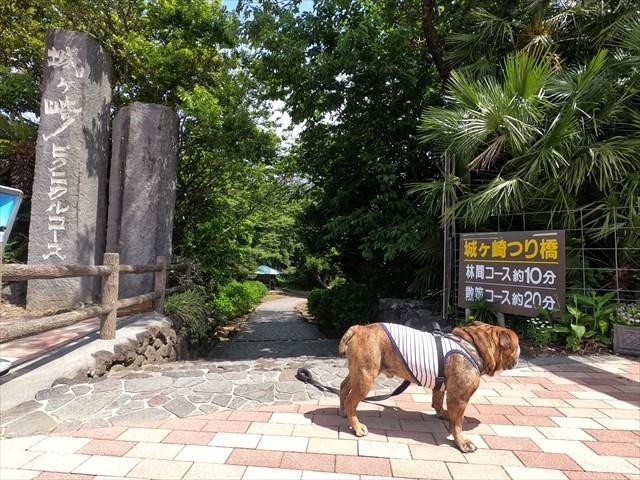 城ケ崎ピクニカルコース入口