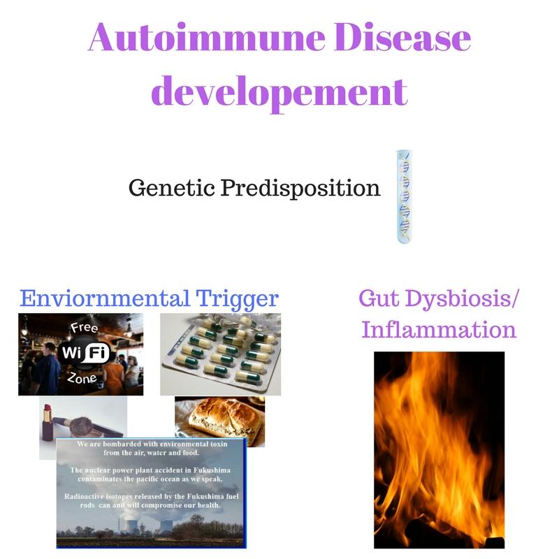 Autoimmune disease developement