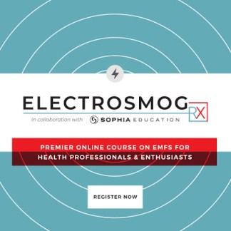 EMF course