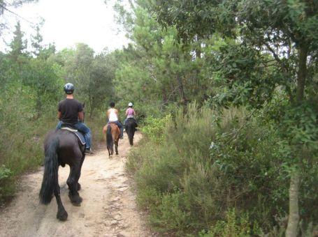 Paseo a caballo desde Barcelona en Parque Natural