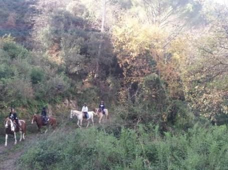 Excursión a caballo o poni por Molins de Rei