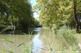 DSC_0098 Canal du midi près de Deyme