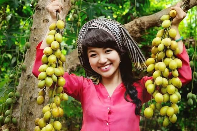 Trees Mekong Delta