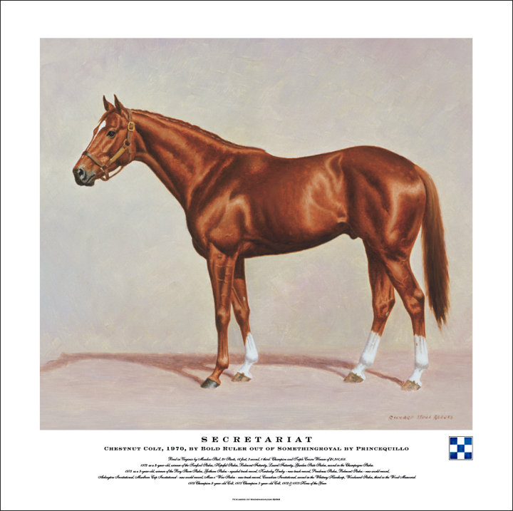 Man O'War, Secretariat and Mr.Kid (OTTBs and OTQH)  (2/4)