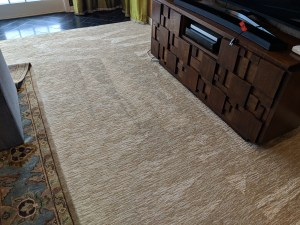 Carpet Stains Removed (After)