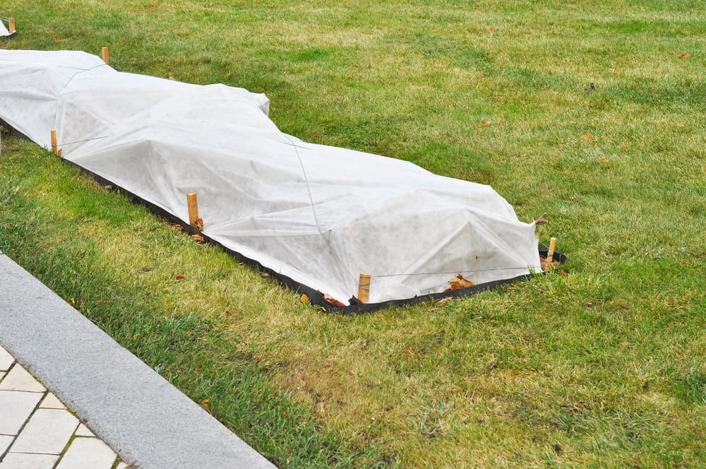 Best Practices for Winterizing Your Lawn Before the