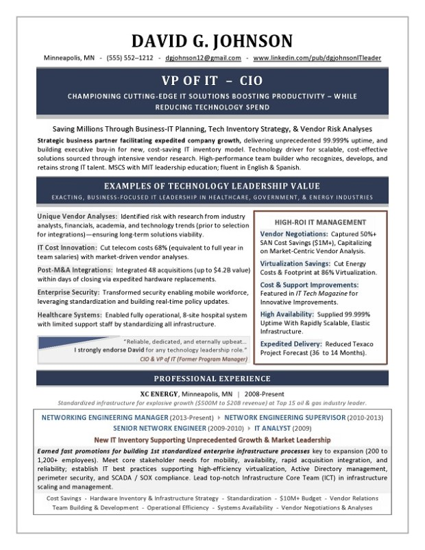 VP of IT & CIO Sample Resume