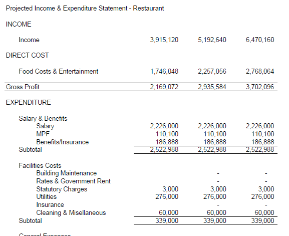 Projected Income Statement Template Free Example