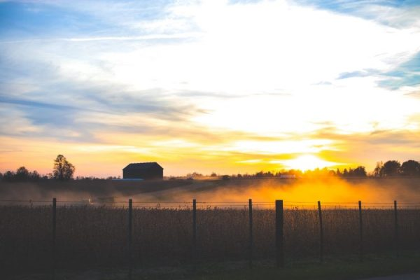 Sunset on fields with a barn in the distance.