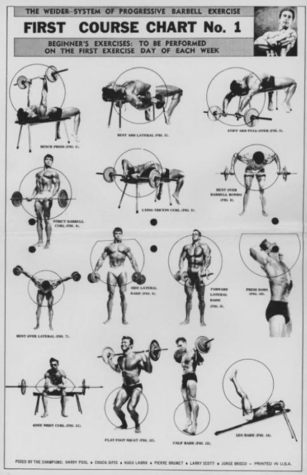 Joe weider barbell training system first course chart also the of progressive exercise  physical culture rh physicalculturestudy
