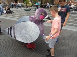 Pigeon - Copy