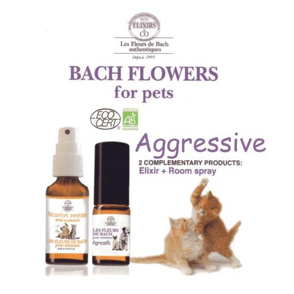 Ex Florum aggressive remedy