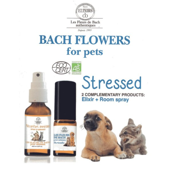 Bach Flowers Stressed box