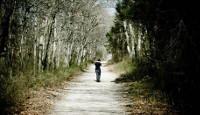 lonely-walk