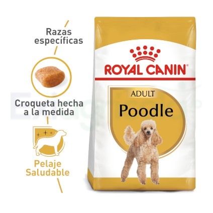 ROYAL CANIN POODLE ADULTO