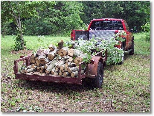 firewood-ed