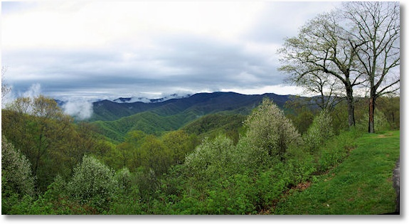 great smoky mountains national park 5-6-09