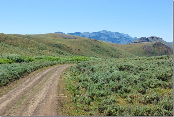 Antelope Valley to Antelope Pass – Heading toward Cherry Creek Summit, July 25, 2010, Idaho