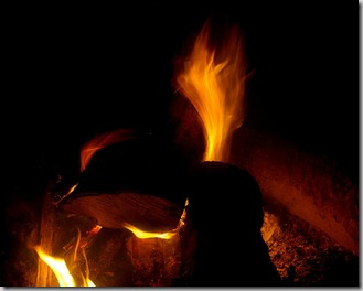 campfire at Petit Jean