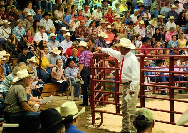 Horse auction, Great Falls, Montana, September 2, 2007.