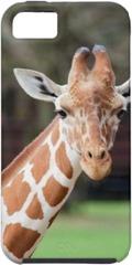 Camelopard (giraffe)