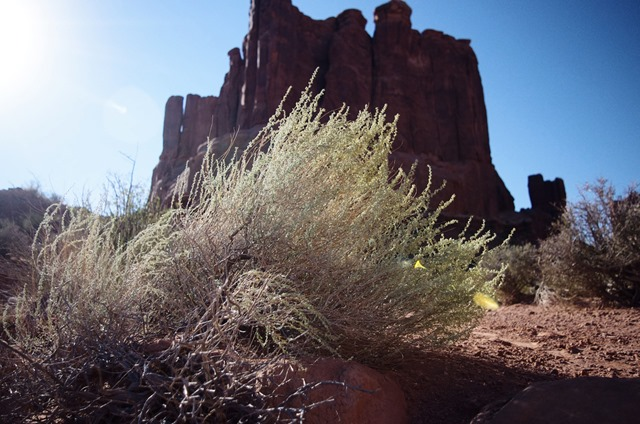Park Avenue, Arches National Park, September 27, 2011